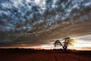 paesaggio rurale definizione
