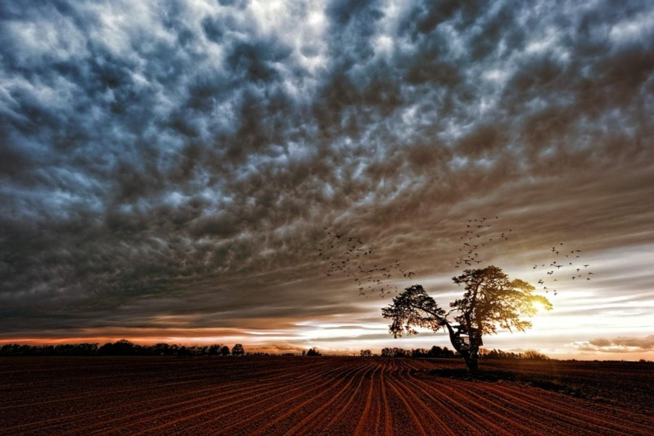 Cosa si intende per paesaggio rurale?